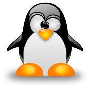 elige un vps con linux